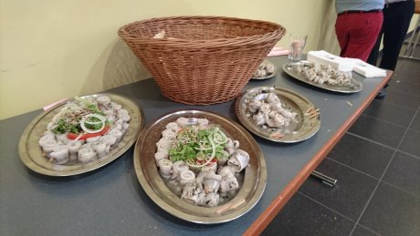 Steco ADT Rollmops